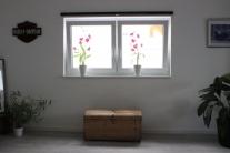 Markus-Wolf-Sanierungen-Fenster